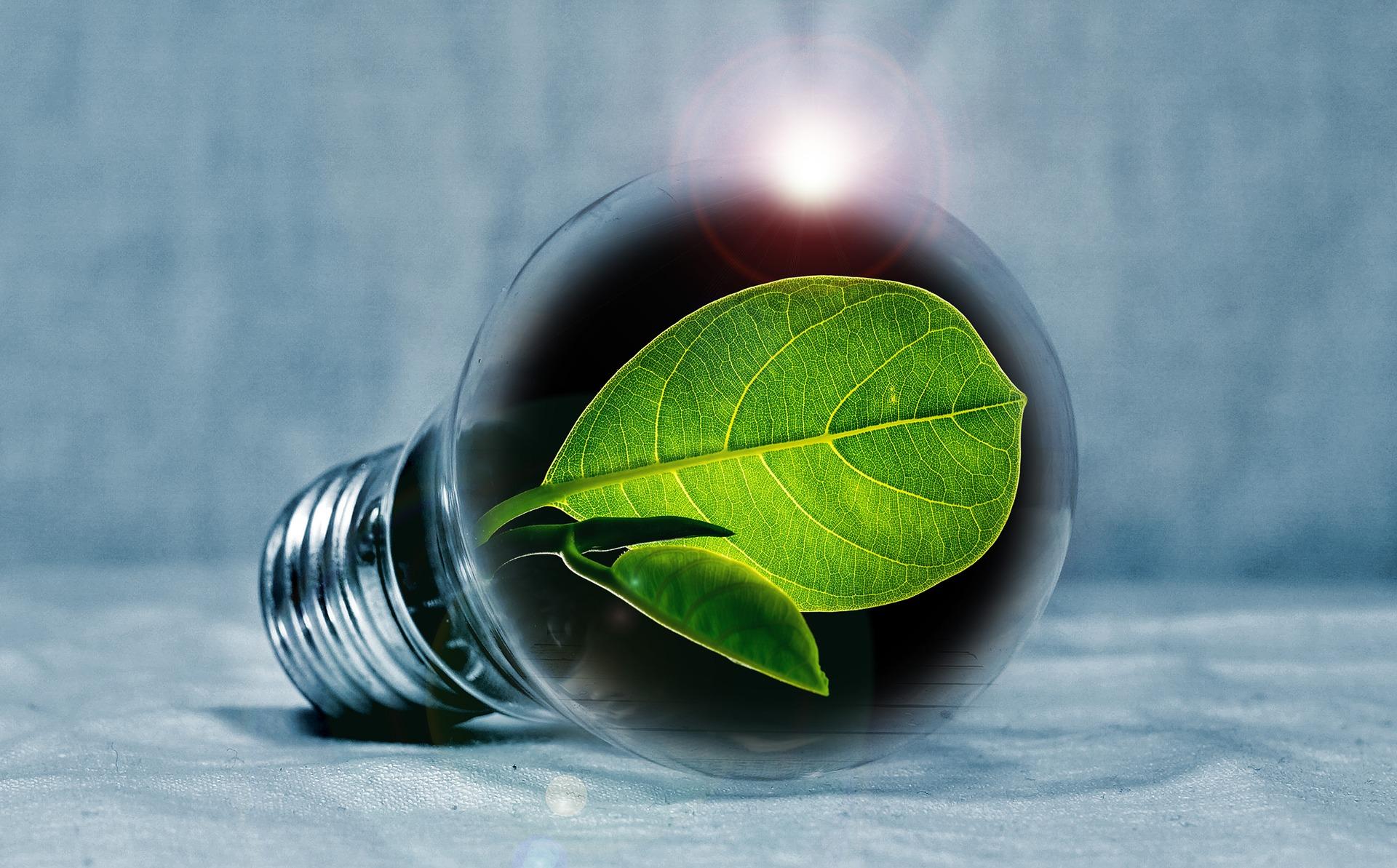 ECA Energy Efficiency