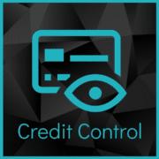 Credit Controller - Job Description